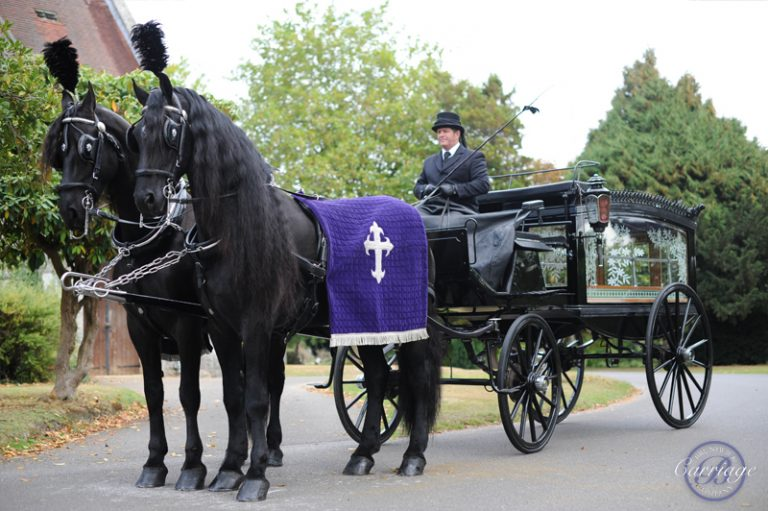 Horse and carriage black