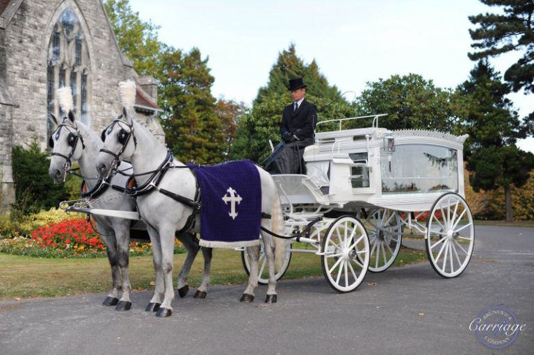 Horse and carriage white